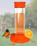 Glass oriole bird feeder jelly