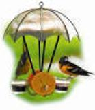 Copper Oriole Jelly feeder